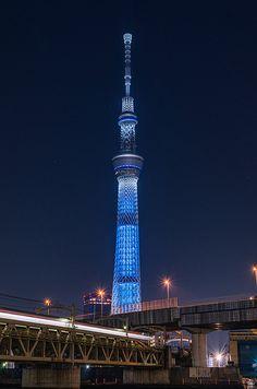 The Blue Rocket - Tokyo Skytree