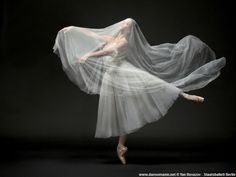 "© Yan Revazov / Staatsballett Berlin Polina Semionova Полина Семионова and Alexander Jones, ""Giselle Festival"", Staatsballett Berlin (March Polina Semionova, Ballet Art, Ballet Dancers, Bolshoi Ballet, Ballet Photography, Fine Art Photography, Princesa Tutu, Ballet Images, American Ballet Theatre"