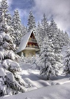 Snow covered Chalet