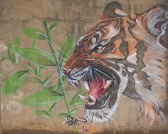 Graffiti streetart Tiger Araraquara Bonet