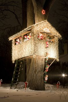 Cover a tree house with Christmas lights. What a neat idea for the holidays! Christmas Lights Outside, Christmas Light Displays, Xmas Lights, Decorating With Christmas Lights, Outdoor Christmas Decorations, Holiday Lights, Light Decorations, Magical Christmas, Beautiful Christmas