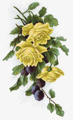 Rosas amarillas con ciruelas