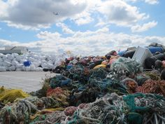 Alaska's $100 million plastic problem catches congressional attention