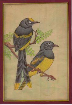 Rajasthani Bird Miniature Art