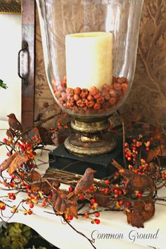 Autumn Candle - be sure to save all those bittersweet berries that fall off the vines!!!!