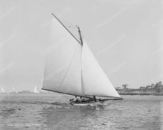Sirocco Sailing Boat 1892 Vintage 8x10 Reprint Of Old Photo