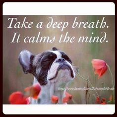 Take a Deep Breath...