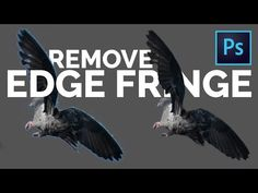 2 Easy Tricks to Remove White Edges or Fringes from Cut-Outs in Photoshop - YouTube