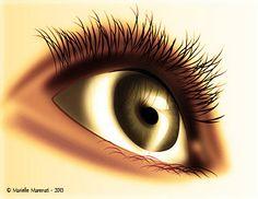 Illustration réalisée sous illustrator et photoshop