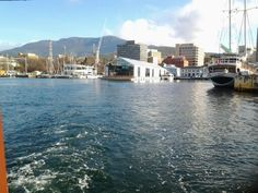 Harbour and Mount Wellington