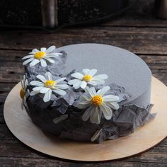 A chocolate chamomile // Привет, ромашки 😉