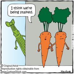 Stalker funny cartoons from CartoonStock directory - the world's largest on-line collection of cartoons and comics. Funny Food Puns, Food Jokes, Food Humor, Funny Jokes, Hilarious, Funny Stuff, Veg Jokes, Jokes Pics, Funny Sayings