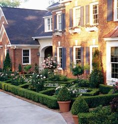 Formal front gardens with boxwoods and roses and topiaries.