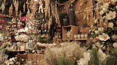 Table Decorations, Furniture, Home Decor, Gardens, Annual Flowers, Landscape Fabric, Shrub, Plunge Pool, Landscape Planner