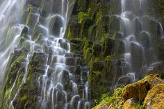 Lower Proxy Falls, Oregon