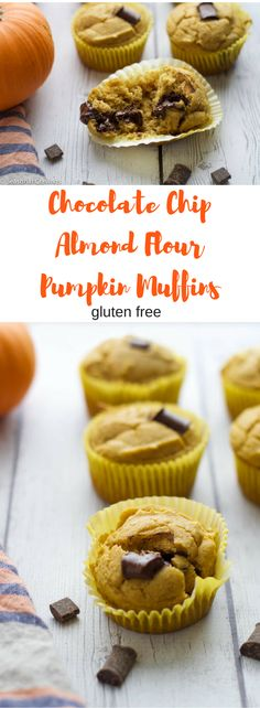 Chocolate Chip Almond Flour Pumpkin Muffins -Need a high protein, vitamin packed pick me up for your afternoon snack? Try these Chocolate Chip Almond Flour Pumpkin Muffins. They are filled with almond flour and pumpkin and taste delicious! Gluten Free Muffins, Gluten Free Baking, Gluten Free Breakfasts, Healthy Pumpkin, Snack Recipes, Sweets Recipes, Yummy Recipes, Recipies, Healthy Recipes