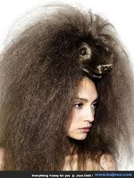 dog hair dog bad hair funny hairstyles fashion fails, worst hair dos terrible hair ugly uglies hair big hair people of walmart hairstyles for men hairstyles for woman Bad Hair Day, Crazy Hair Days, Dress Hairstyles, Unique Hairstyles, Latest Hairstyles, Ugly Hairstyles, Amazing Hairstyles, Wild Hair, Hair Beauty