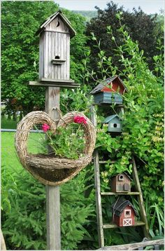 Cute way to set up birdhouses