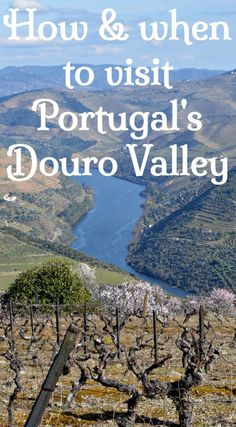 Best time and best ways to visit the Douro Valley and Douro wine region in Portugal. Click for insider tips on walking and hiking in the Douro, driving, train trips and Douro river trips plus day tours from Porto. See the most scenic wine region in Portugal.