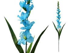 6 pcs Gladiolus Single Stems for Wedding Flowers Arrangements - Turquoise by BalsaCircle, http://www.amazon.com/dp/B0075DWMLK/ref=cm_sw_r_pi_dp_4.p1rb0N68HET