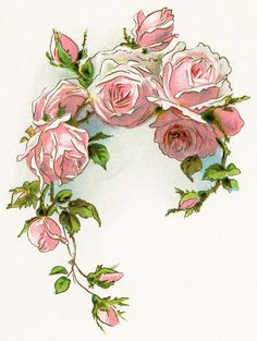 victorian rose | free vintage image, free vintage clipart rose, pink roses, roses and ...