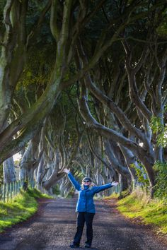 The Dark Hedges of Northern Ireland | The Planet D: Adventure Travel Blog