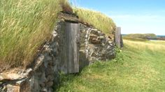 A group of students are restoring root cellars in Elliston, Lindsay Bird reports Root Cellar, Newfoundland And Labrador, Summer Travel, Restoration, Students, Bird, Group, Adventure, Natural