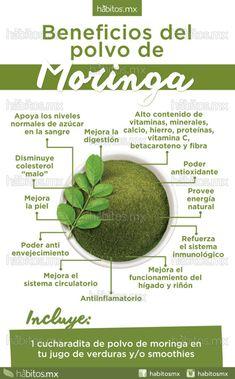 Beneficios del polvo de Moringa Health And Nutrition, Health And Wellness, Keto Diet For Beginners, Food Humor, Medicinal Plants, Health Advice, Natural Healing, Natural Detox, Natural Medicine