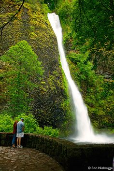 Horsetail Falls along the Historic Columbia River Highway, Columbia River Gorge National Scenic Area, Oregon