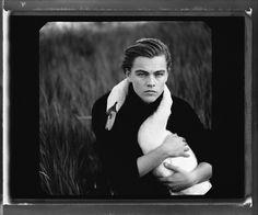 Leonardo DiCaprio, Tejon Ranch, Lebec, California,...