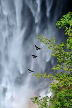 Kegon Falls - Nikko, Japan
