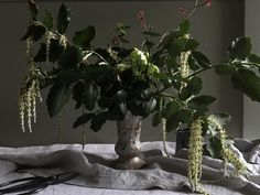 A vase of 'pure green'. Winter in all its gloriousness all picked here today. Still totally obsessed by the Garrya catkins