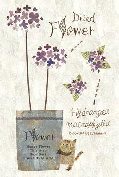 Dried Flower. Hydrangea macrophylla* あじさい* by Megumi Inoue. http://sorahana.ciao.jp/