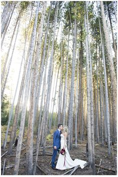 breckenridge weddings, colorado weddings, vail weddings, sevens weddings, ja special events, colorado wedding photos, two one photography, champagne toasts, pine tree photos