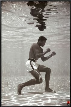 "$39.99 framed, 24""x36"" Ali - Underwater Prints at AllPosters.com"