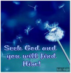 But from there you will seek the Lord your God and you will find him, if you search after him with all your heart and with all your soul. (Deuteronomy 4:29 ESV)