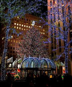 A placed I'd love to see at Christmas. Rockefeller Center, New York City Rockefeller Center, Christmas In The City, New York Christmas, New York Noel, New York Weihnachten, Christmas Lights, Christmas Tree, Christmas Photos, Xmas