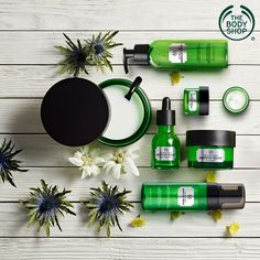 Add some revitalisation to your skin. Oils of Life™ range of The Body Shop contains three precious seed oils from around the world making your skin thrive and renew. Body Shop Toner, Body Shop Skincare, Body Shop Products, Body Shop Tea Tree, Natural Hair Treatments, Skin Treatments, The Body Shop Logo, Body Shop Christmas, Tea Tree Mask
