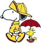 Not just a fair weather friend