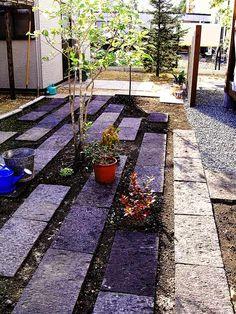 Stone/plant