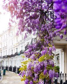 #Notting Hill London