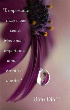 Portuguese Quotes, Good Morning Greetings, Positive Mind, Positivity, Words, Namaste, Stylus, Kisses, Coaching
