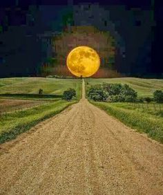 Full moon ahead
