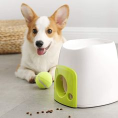 Puppy Dog Eyes, Dog Cat, Dog Tennis Ball Launcher, Iq Puzzle, Activity Monitor, Pet Hair Removal, Quilting Templates, Interactive Toys, Reduce Stress