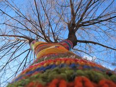 Wires & Yarns: Knitting to Heal - Yarn Bombing - My Tree
