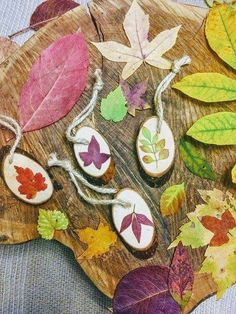 Dried leaves on wood slices. Such beautiful ornaments! Nature Crafts, Fall Crafts, Holiday Crafts, Preschool Garden, Preschool Art, Projects For Kids, Crafts For Kids, Arts And Crafts, Wood Slice Crafts