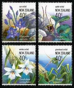 The 1990 issue of the new Zealand stamp showcased four native orchids: a sun orchid (Thelymitra pulchella) a spider orchid (Nematoceras macranthum, previously Corybas macranthus) winika orchid (Winika cunninghamii Orchid Images, Postage Stamp Art, You Are The World, Flower Stamp, May Flowers, Stamp Collecting, Native Plants, Bonsai, Ephemera