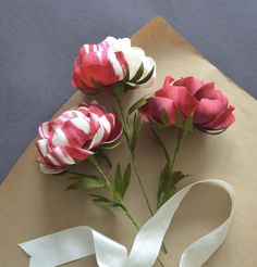 Paper Peonies by Lucia Balcazar Paper Flower Art, Easy Paper Flowers, Paper Flower Tutorial, Flower Crafts, Yarn Flowers, Diy Flowers, Paper Peonies, Handmade Flowers, Flower Making