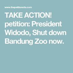 TAKE ACTION! petition: President Widodo, Shut down Bandung Zoo now.