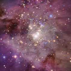 Orion Nebula, taken by the Chandra X-Ray. Smithsonian's Astrophysical Observatory in Cambridge, MA